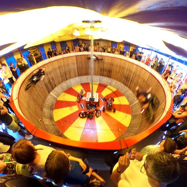 Wall of death, cyclists performing tricks in a circle wall.